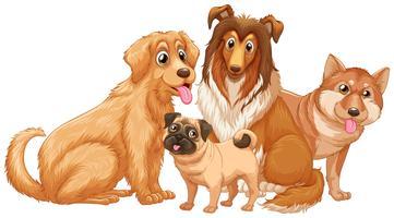 Diversi tipi di simpatici cuccioli di cane vettore