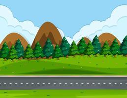 Una bellissima strada naturale vettore