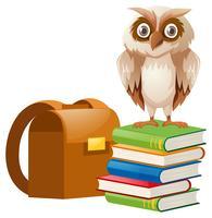 Gufo in piedi su una pila di libri