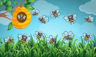 Le api volano intorno all'alveare vettore