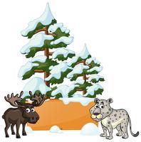 Alci e ghepardi nella neve vettore