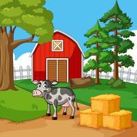Mucca che vive nella fattoria vettore