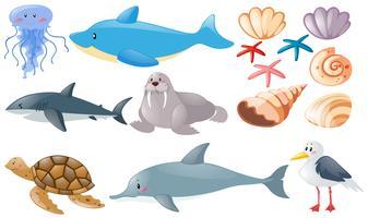 Diversi tipi di animali marini vettore