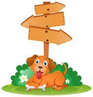 Segni di legno e cane sotto