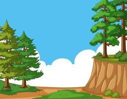 Scena con alberi di pino nel campo vettore