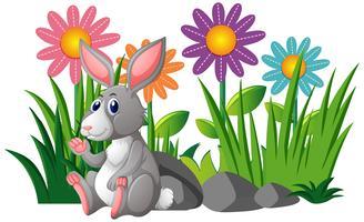 Coniglio carino in giardino fiorito