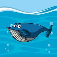 Balena nuota nell'oceano vettore