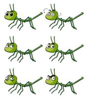 Attacca insetto con diverse emozioni vettore