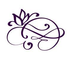 elementi di calligrafia fiorire disegnati a mano. Illustrazione vettoriale