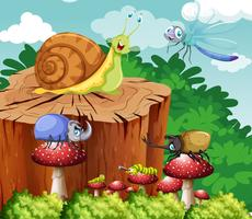 Molti insetti in giardino vettore
