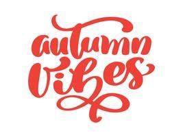 Frase di lettering mano di vibrazioni di autunno sulla maglietta di illustrazione vettoriale arancione o cartolina stampa design, modelli di design del testo di calligrafia vettoriale, isolato su sfondo bianco