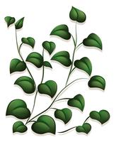 Le foglie vettore