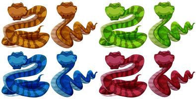 serpenti vettore