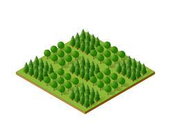 Elementi di natura campeggio foresta isometrica alberi 3d vettore