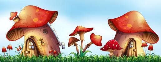 Case dei funghi nel giardino vettore