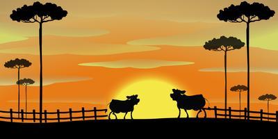 Scena silhouette con le mucche in fattoria vettore