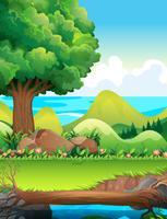 Scena con alberi nel campo vettore