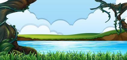 Foresta verde e paesaggio lacustre vettore