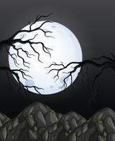 Priorità bassa della foresta di notte oscura di mistero