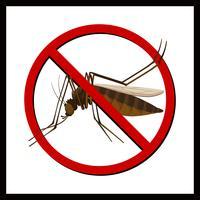 Segno di nessuna zanzara vettore
