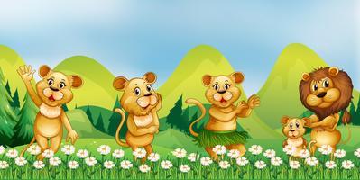 Famiglia di leoni nel campo dei fiori vettore