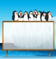 Cornice in legno con pinguini su ghiaccio vettore