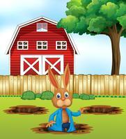 Un coniglio scavando un buco