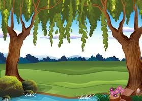 Scena di sfondo con campo verde