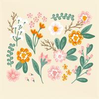 Vector fiori disegnati a mano colorati