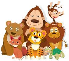 Diversi tipi di animali selvatici