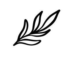 La mano ha abbozzato gli elementi floreali d'annata di vettore - i turbinii e le piume del fiore delle foglie degli allori. Selvaggio e libero. Perfetto per inviti di auguri, citazioni, blog, cornici di nozze, poster