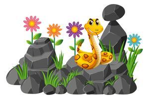 Serpente selvaggio sulle rocce vettore