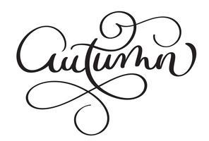Parola di autunno su sfondo bianco. Illustrazione disegnata a mano EPS10 di vettore dell'iscrizione di calligrafia