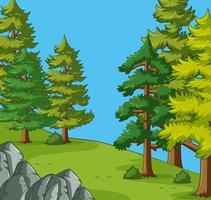 Alberi di pino nel campeggio vettore