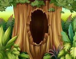 Un grande tronco di un albero con un buco vettore