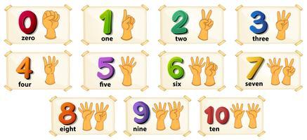 Numeri vettore
