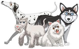 Diversi tipi di cani carini vettore
