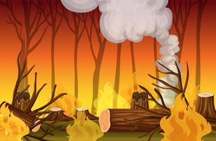 Un disastro di un incendio boschivo vettore