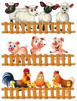 Animali da fattoria dietro il recinto di legno