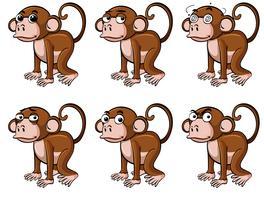 Scimmia con diverse emozioni