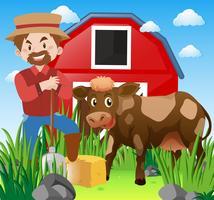 Agricoltore e mucca in cortile