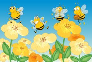 Volare le api da miele vettore