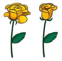 Due fiori adorabili