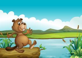 Un castoro sopra un bosco galleggiante