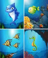 Animali marini che nuotano nell'oceano vettore