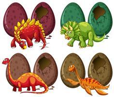 Quattro tipi di dinosauri e uova vettore