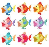 Pesci colorati vettore