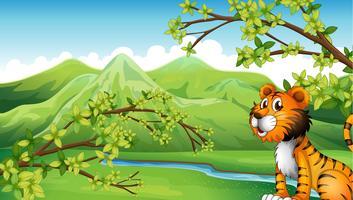 Una tigre in uno scenario di montagna
