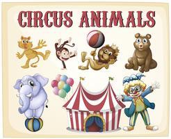 Animali da circo vettore
