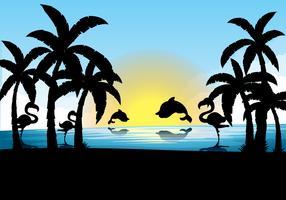 Scena silhouette con delfino e fenicottero al tramonto vettore